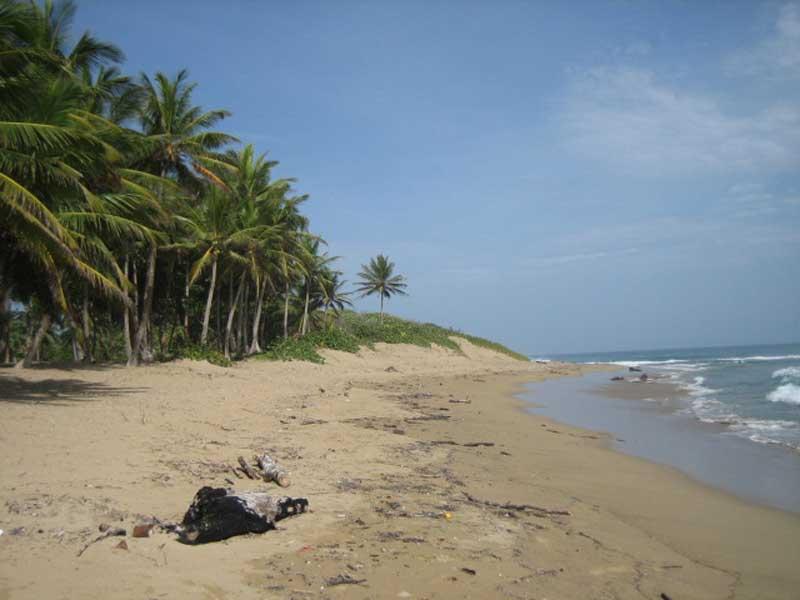 Dominican Republic beachfront investment land in Cabarete