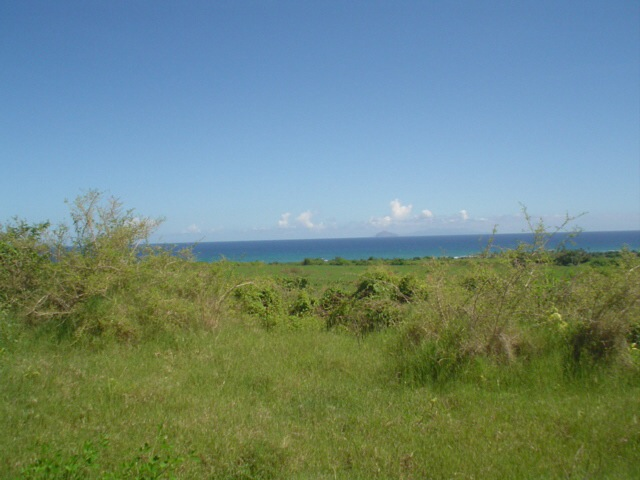 Remarkable 15.1535 acres on Nevis Island for sale