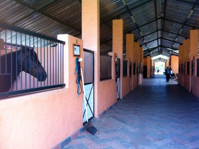 Sea Horse Ranch Equestrian Center between Sosua and Cabarete